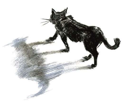 Рисунок Анастасии Пассовой
