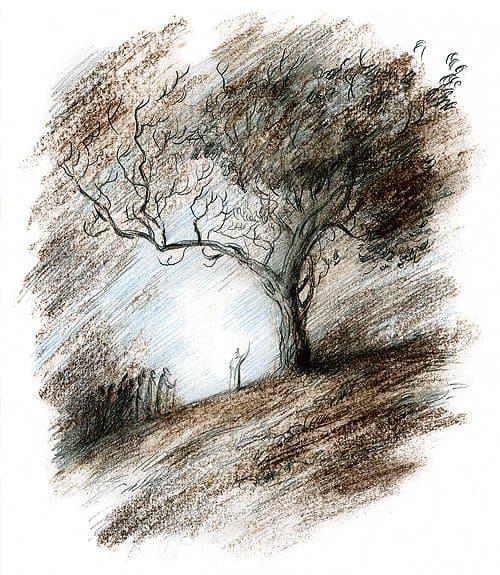 Рисунок Екатерины Гавриловой
