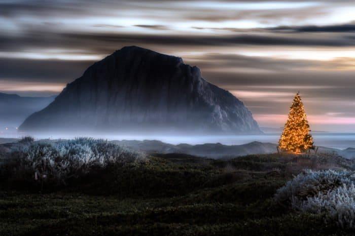 Самые проникновенные слова о Рождестве: Евангелие, литература и личные истории