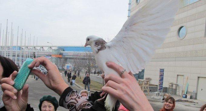 Обычай выпускать птиц на Благовещение