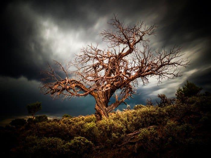 Что такое апокалипсис. Фото Bryce Bradford