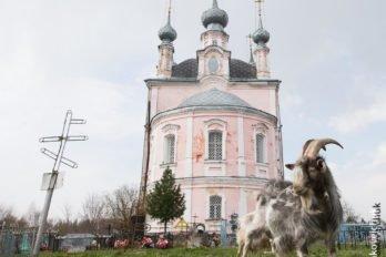 2014-04-28,A23K0115, Ярославль, Флоровское, s_mak