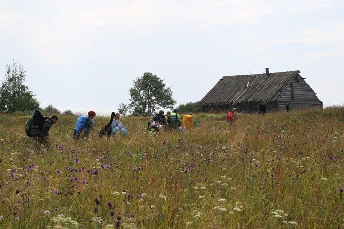 От деревни на Лукострове остался один дом, где мы и поселились