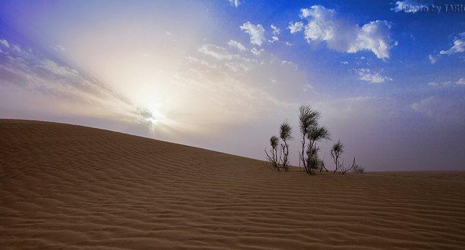 pustynja-g