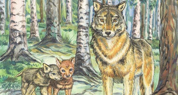 Истории о добрых чувствах и дружелюбии животных - Православный журнал