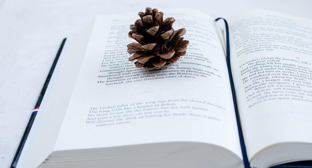 Что читать в Рождество
