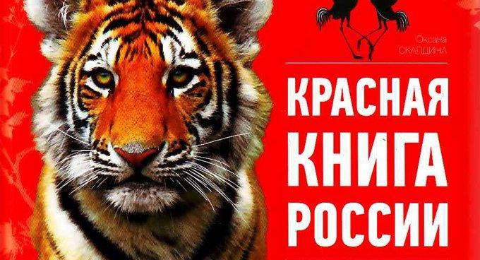 Об исчезающих растениях и животных россияне узнают из новой Красной книги