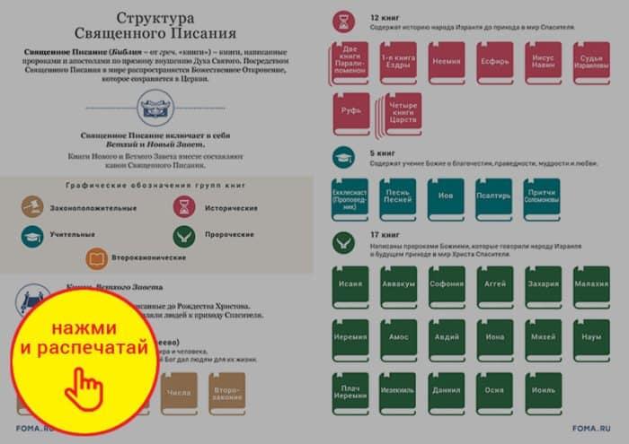 Структура Библии. Инфографика