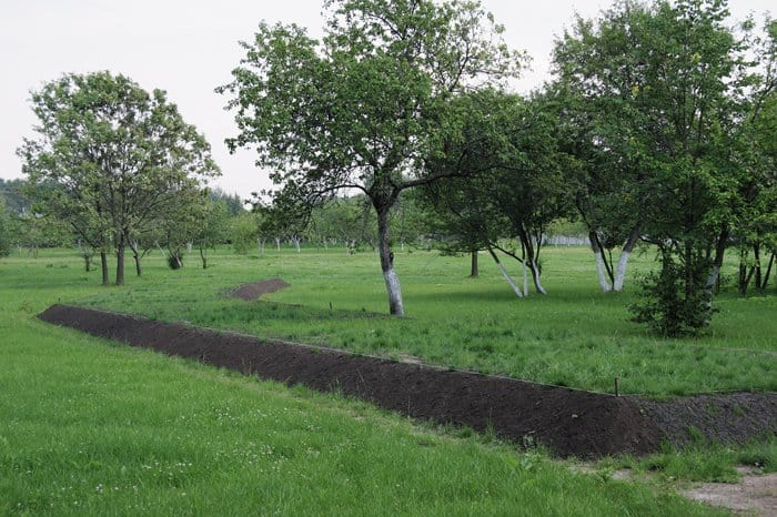 Бутовский полигон сегодня можно было бы назвать очень мирным испокойным местом, но погребальные рвы, ранами прошедшие по его территории, не позволяют так считать...