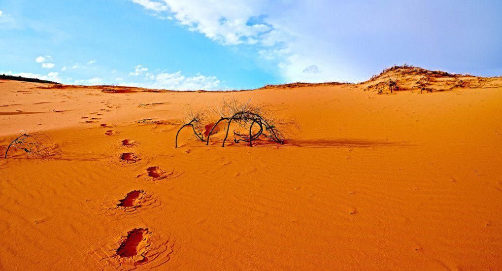 Через 30 лет на Земле могут исчезнуть важные природные ресурсы