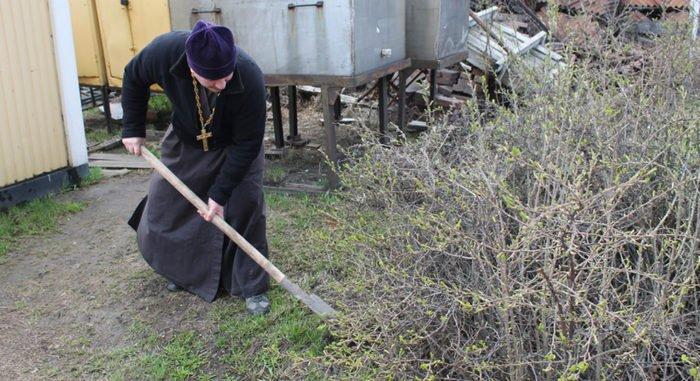 Церковь подключится к охране природы на всех уровнях