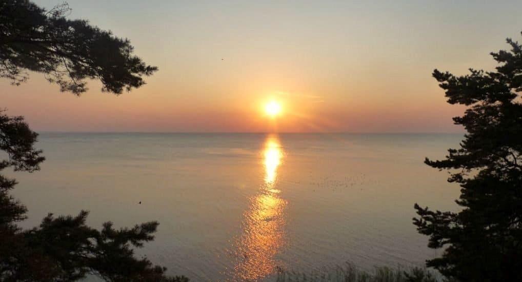 Талабские острова псковской области: как добраться из Пскова и какие достопримечательности посмотреть