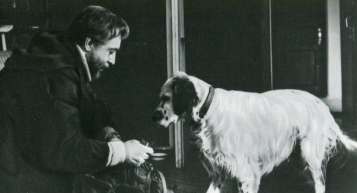 Пять фильмов о животных
