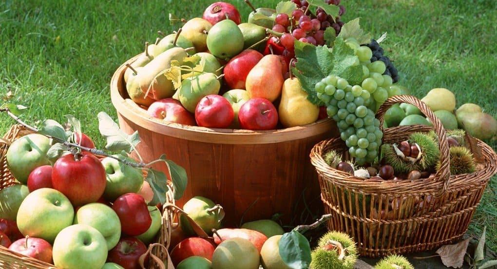 Для пациентов столичных хосписов собирают фрукты и овощи