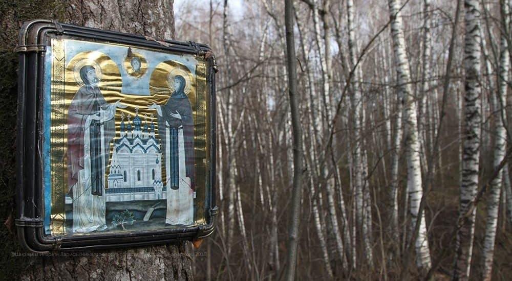 На заставке фрагмент фото Ширяевых Игоря и Ларисы, проект «Интересный мир»