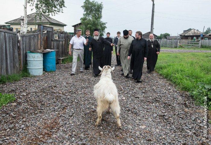 Неожиданная встреча во время экскурсии по селу Алымовка