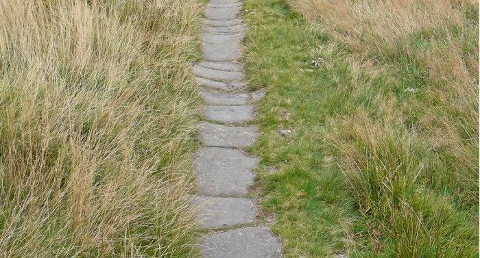 Белая дорога