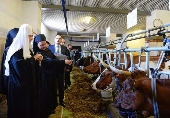 10 июля. Патриарший визит на Валаам. Посещение монастырской фермы