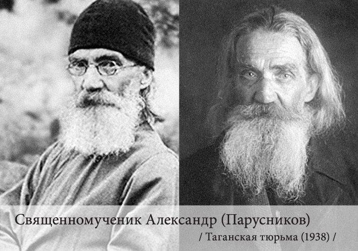 парусников