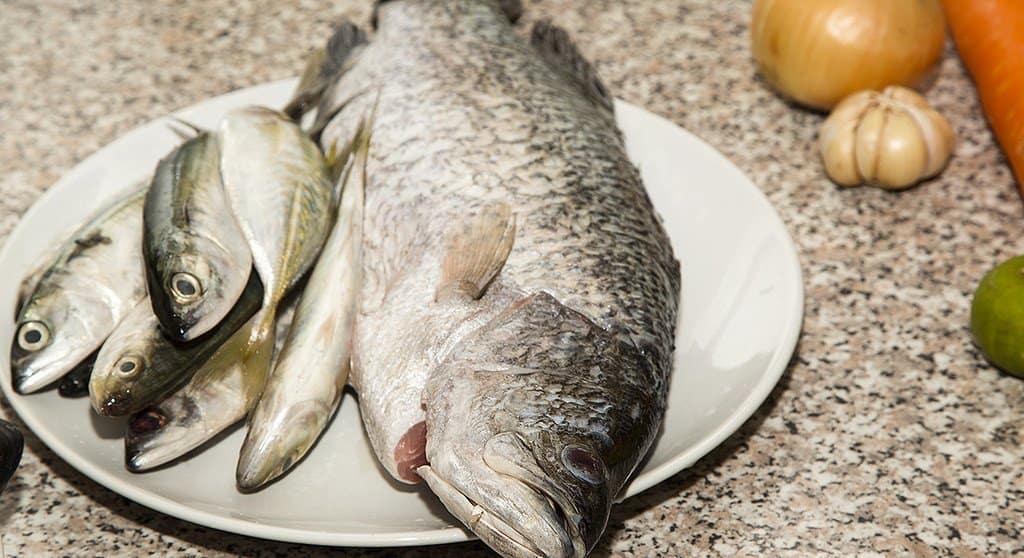 Грех ли в Великий пост ставить на помин рыбу?