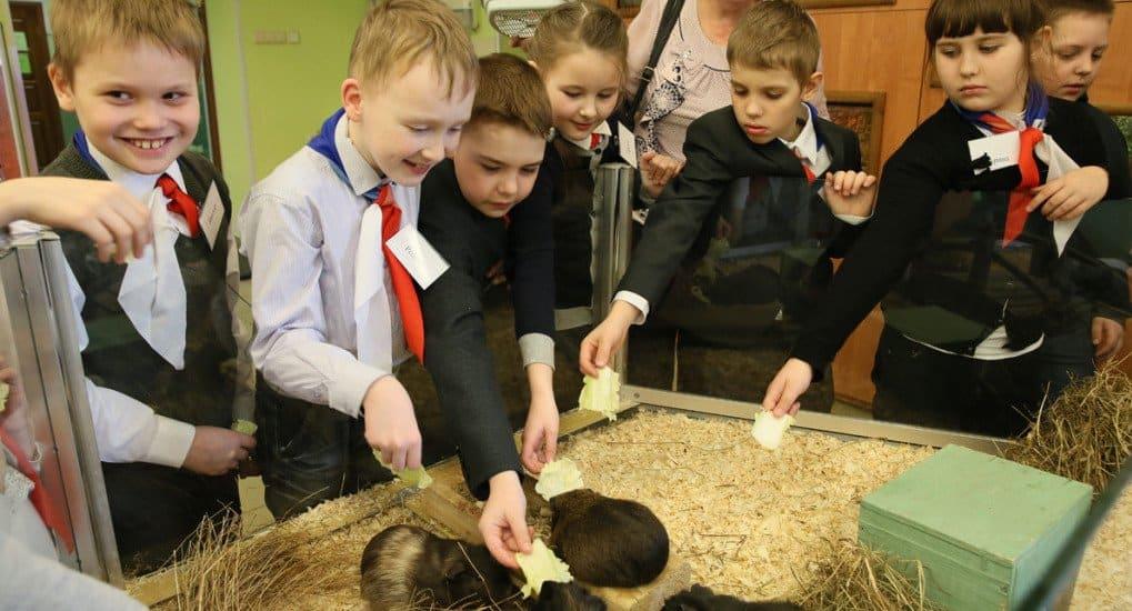 Под Ярославлем создается образовательный центр имени Александра Невского