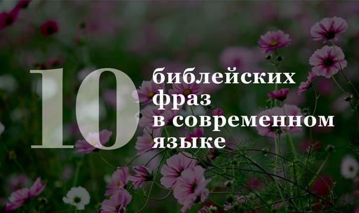 25-07-2016_Slova_002_cover
