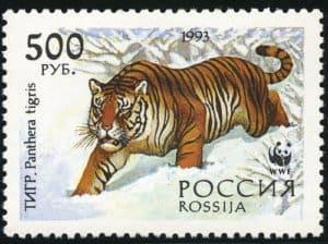 29.2. День тигра