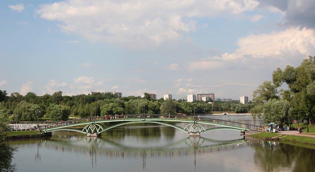 Вокруг крупных городов России создадут «зеленые щиты»