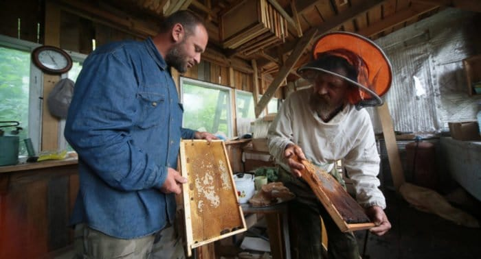 Пчелы, помидоры и молитва: как постятся в монастыре