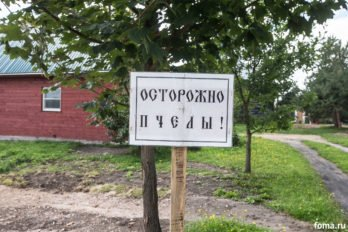 2016-08-14,A23K1061, Любим, Спасо-Преобр Генн, Медовый, Литургия, s_f