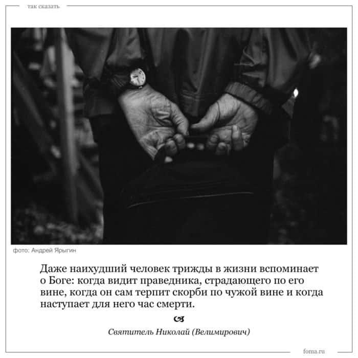 Цитаты. Святитель Николай (Велимирович)