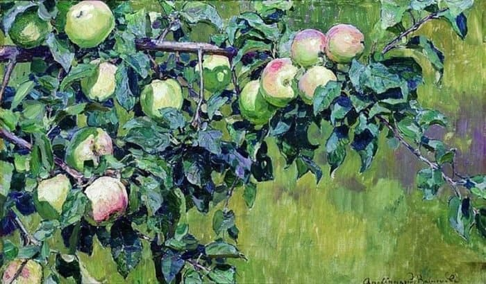 Ветка яблони. 1930