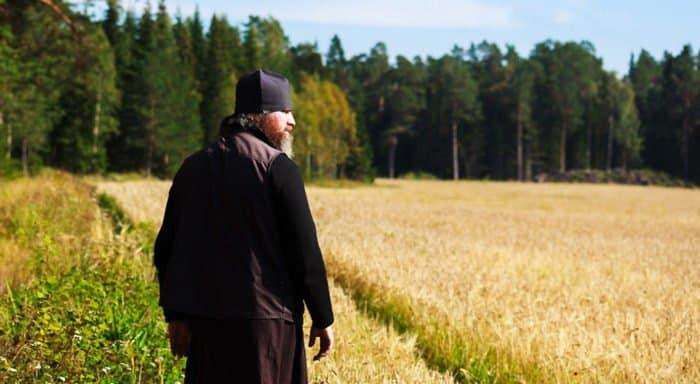 Впервые за 77 лет валаамские монахи собрали урожай зерна