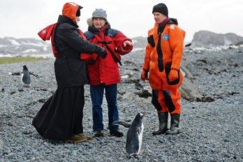 С сотрудниками станции «Беллинсгаузен» и«местными жителями»— пингвинами