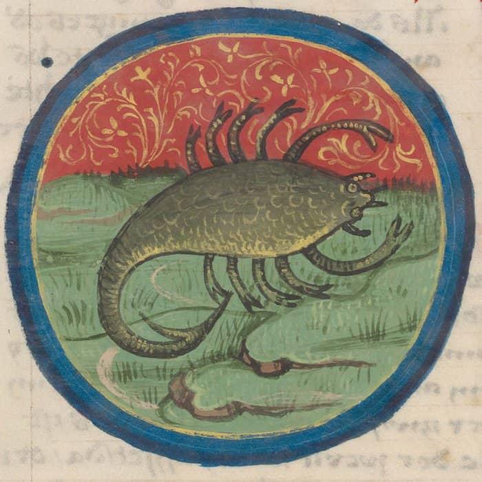 Фото Virtual Manuscript Library of Switzerland