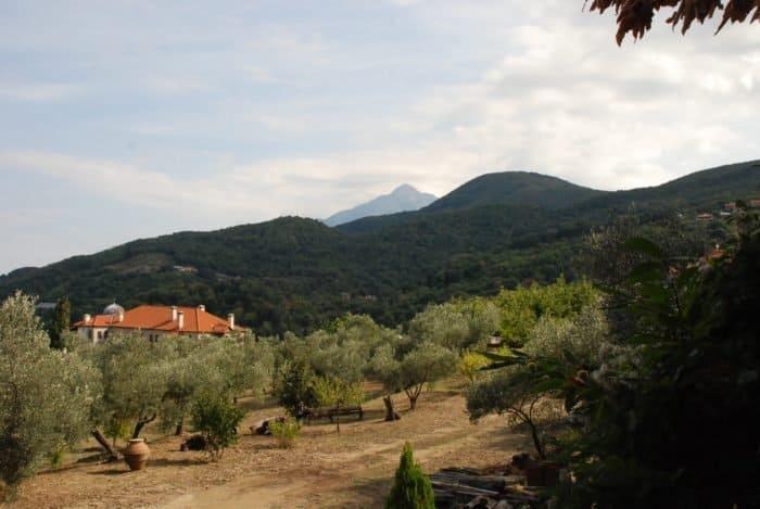 Оливки и гора Афон