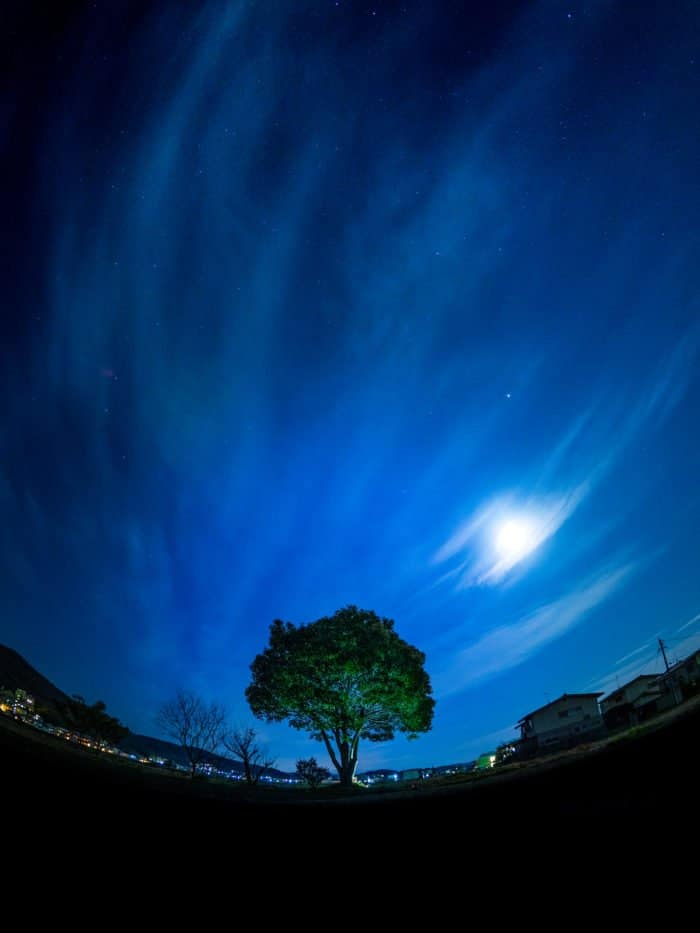 Фото TAKUMA KIMURA