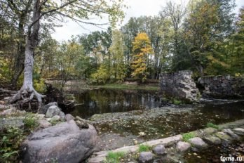 Река Вяда, на берегу которой находится «Ручей». Фото Юлии Маковейчук