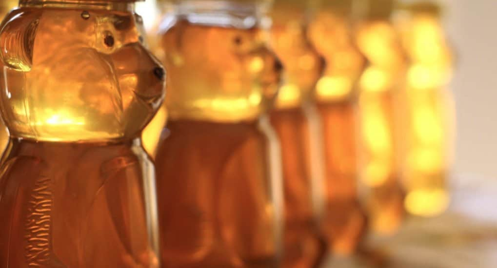 Можно ли в Великий пост есть мед?