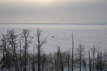 Чухломское озеро. Фото Владимира Ештокина
