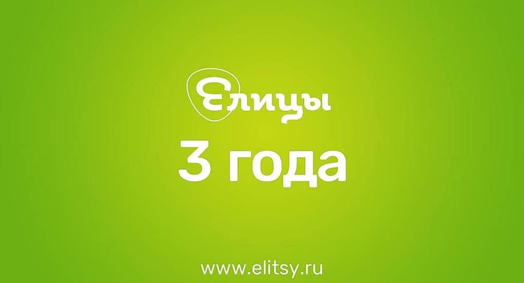 Православной соцсети «Елицы» исполнилось 3 года