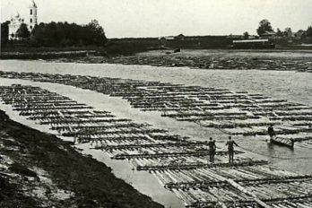 Сплав по реке Молога