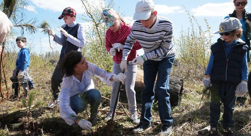 Особые дети посадили лес в подмосковной Власихе