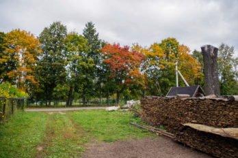 Газ в Богородском только привозной, в баллонах. Готовить на нём можно, а отапливаться — слишком дорого. Поэтому по старинке топят дровами. Дрова заготавливают загодя.
