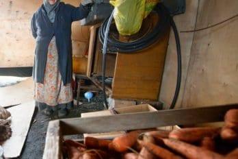 Мать Калиса в овощехранилище; рассказывает осложностях выращивания моркови в суровом климате