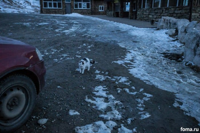 Это Кавказ: «напряженное» путешествие журналиста «Фомы»