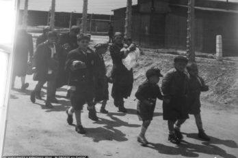 2017-09-04,A23K0616 Польша, Освенцим, Аушвиц I, s_f