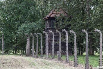2017-09-04,A23K0981 Польша, Освенцим, Аушвиц II, Биркенау, s_f