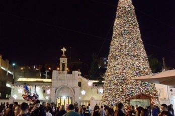 Рождественская ель возле храма Благовещения, Назарет, Израиль. Фото Олега Переверзия