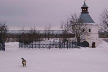 В Спасо-Прилуцком монастырском дворике. Вологда. Фото Ольги Пономаревой